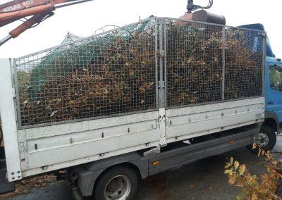 Csipegető kanalas ág szállítás